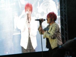 Gerard und Leinwandgee